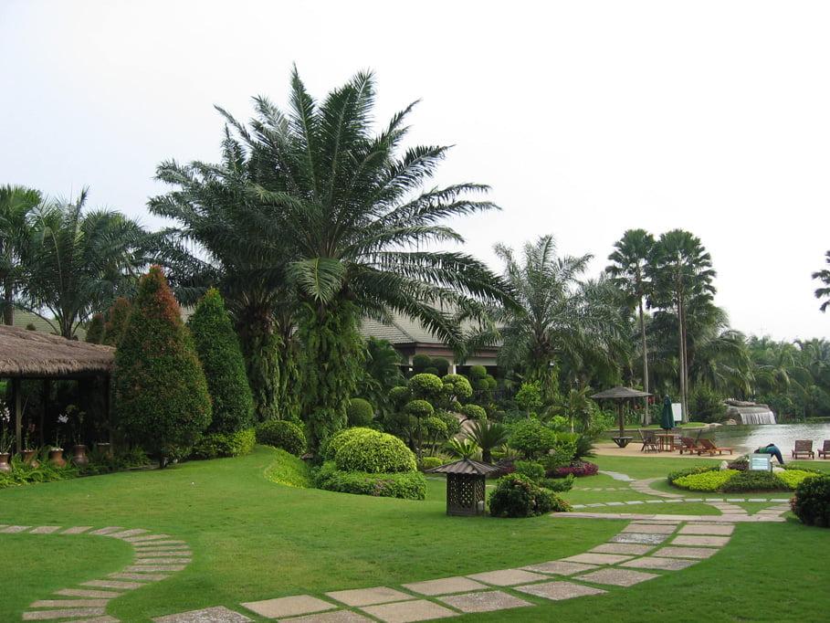 Công ty thiết kế cảnh quan sân vườn
