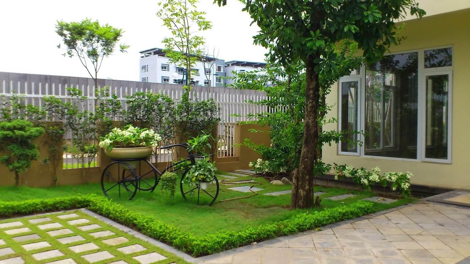 Kết quả hình ảnh cho Cây cảnh sân vườn