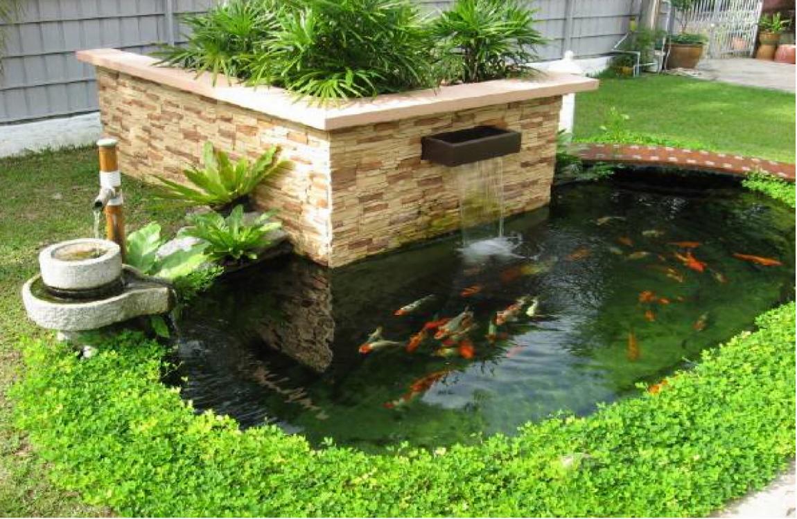 Tiểu cảnh hồ cá đẹp