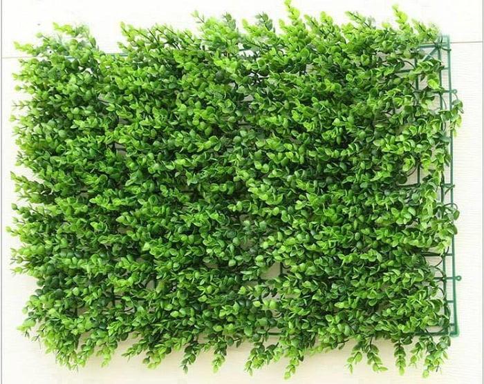 Kết quả hình ảnh cho Thiết kế thi công vườn tường xanh thẳng đứng
