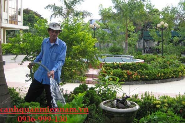 chăm sóc cảnh quan sân vườn quận 9